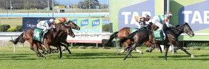 Gunn Island wins the Join us in celebrating 150 years at Cranbourne Turf Club 3YO Maiden on August 11, 2016