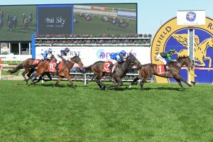Blue Tycoon wins the Phil Sly Memorial Plate at Caulfield on May 14, 2016 i