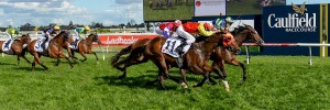 Keen Array wins Fight Cancer Foundation Testa Rossa Stakes at Caulfield on September 17, 2016