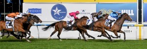 Don't Doubt Mamma  wins ZOUSTAR Stocks Stakes at Moonee Valley on September 30, 2016